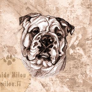 Bulldoggi_PM