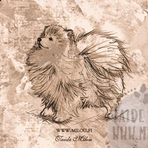 Pomeranian1_PM