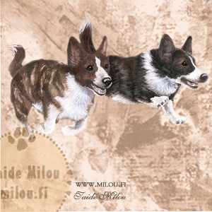 Welsh corgi gardigan_M