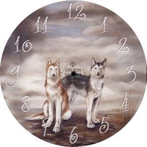 laika,husky,susi